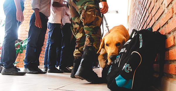 Dos canes, un pastor belga y un labrador, fueron los encargados de olfatear en cada una de las mochilas de los alumnos del establecimiento