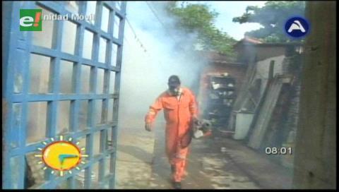 Zika: Santa Cruz activa brigadas de fumigación para sanear viviendas de embarazadas