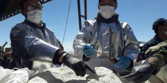 Decomisan 28,5 kilos de cocaína en operaciones antidrogas en Bolivia