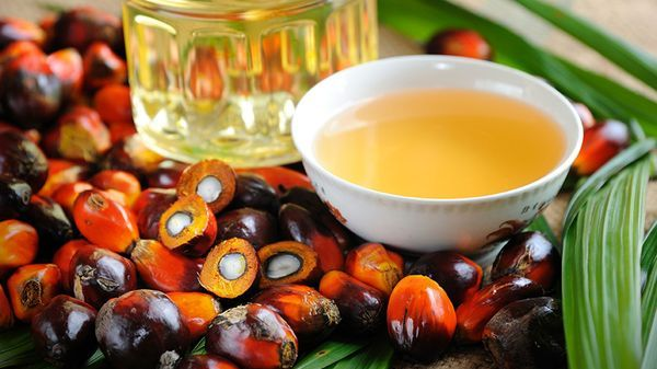 El aceite de palma es el segundo en producción mundial, detrás del aceite de soja. Europa advirtió sobre sus posibles riesgos según el proceso al que es sometido