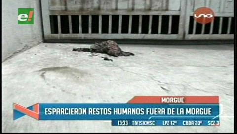 La Paz: Esparcieron restos humanos fuera de la Morgue