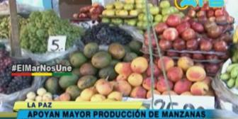 Políticos apoyan incentivar producción de manzanas en Bolivia