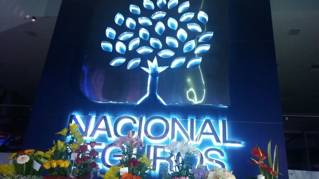 Nacional Vida