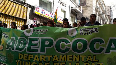 Cocarico denuncia cobros ilegales en Adepcoca y reabre polémica cocalera