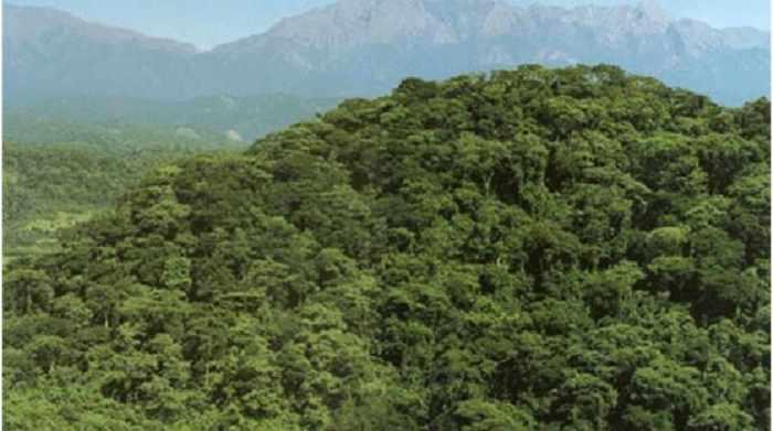 """Con agua, energía y viviendas, Evo lanza la """"conquista"""" de Tariquía"""