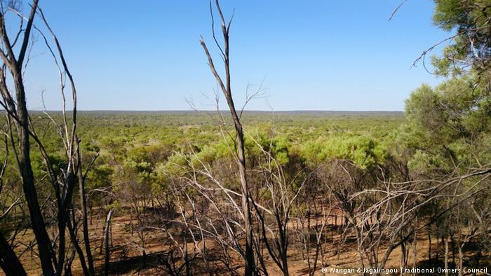 Vista aérea de los humedales de Doongmabulla Springs en la zona de la mina de Carmichael, Australia (Fuente: Consejo de Familia del pueblo indígena Wangan y Jagalingou (W&J))