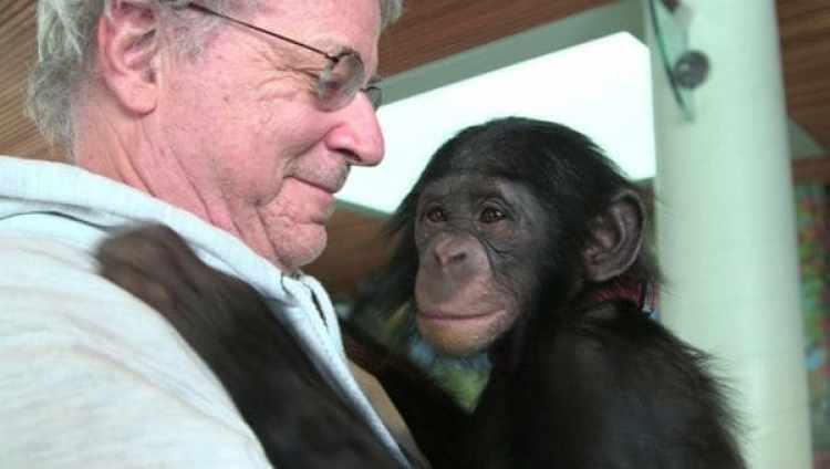 """El abogado especializado en derecho de los animales, Steven M. Wise, en el documental """"Unlocking the Cage"""" (Abriendo la jaula) con elchimpancé Teko (Cortesía de Pennebaker Hegedus Films /HBO)"""