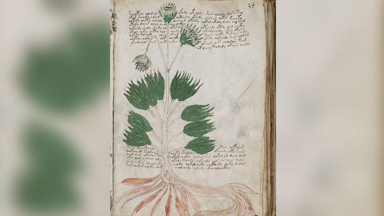 Identifican al posible autor de un misterio literario medieval
