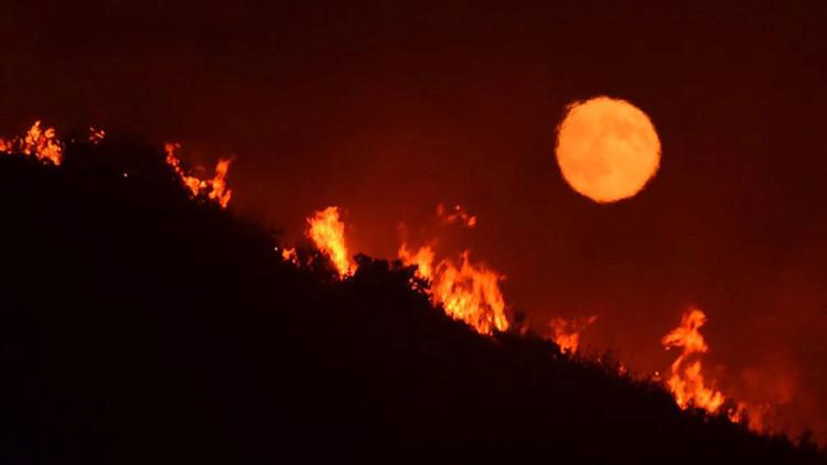 Fuertes incendios forestales afectan al estado de California