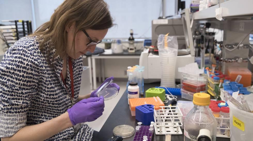 Una investigadora en un laboratorio en Nueva York