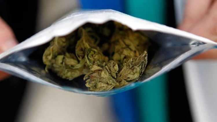 Floresde cannabis en su paquete original, que se vende en farmacias (EFE)