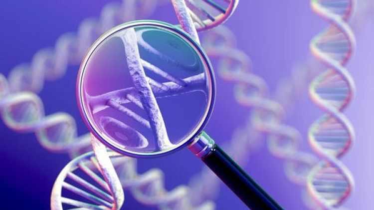 La biología sintética nace con los nuevos métodos para editar el ADN de manera sencilla.