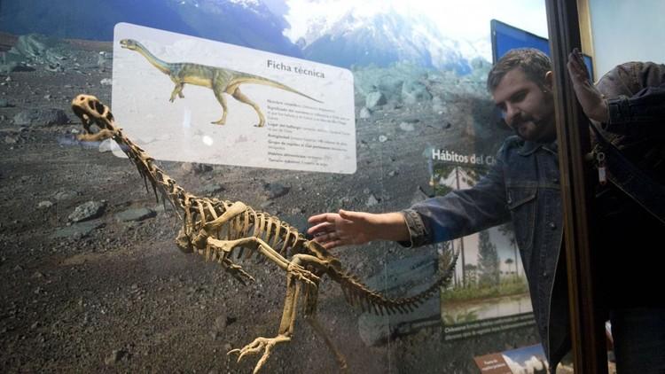 Chilesaurio sería el eslabón perdido de los dinosaurios — CHILE