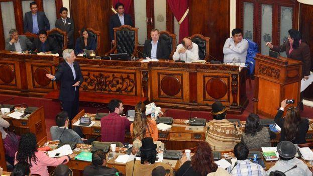 """En medio del debate el titular de la Asamblea calificó de """"loca"""" a la diputada de oposición. (Imagen de Diputados)"""