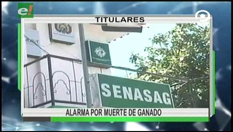 Video titulares de noticias de TV – Bolivia, noche del miércoles 9 de agosto de 2017