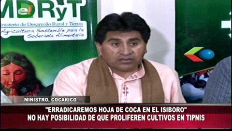 Comienza la erradicación de cocales ilegales en el parque Isiboro Secure