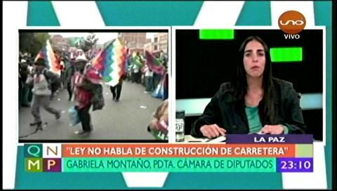"Diputada Montaño: ""Ley del TIPNIS no habla de carretera"""