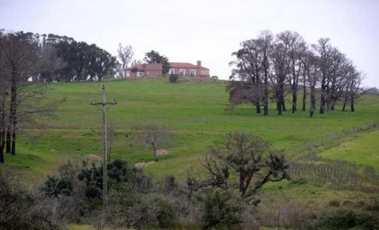 Campo de 600 hectáreas que compró el capo y luego vendió.