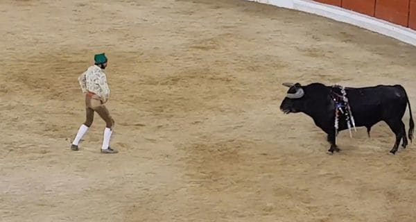 Por esta brutal cornada murió torero durante concurso en Portugal