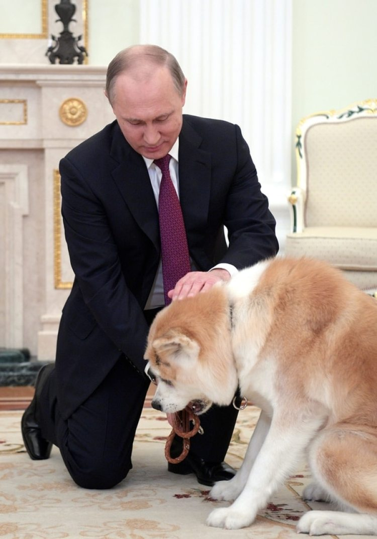 Vladimir Putin con su perro Yume (Photo by Alexei DruzhininTASS via Getty Images)