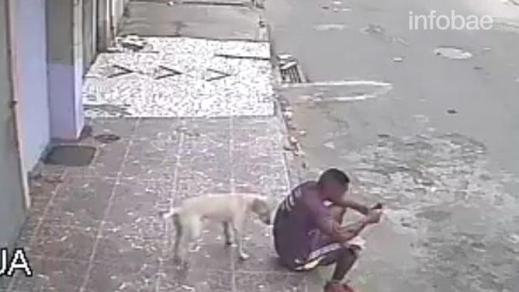 El perro olfateó la espalda del hombre y luego lo orinó