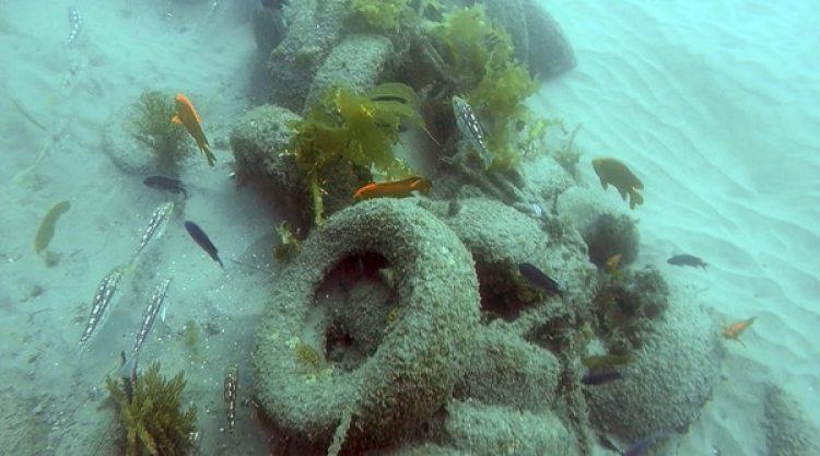 """Un pila de basura en el fondo marino de California. """"Es difícil pensar que alguien creyó que esta sería una buena idea"""", lamentaron las autoridades (AP)"""