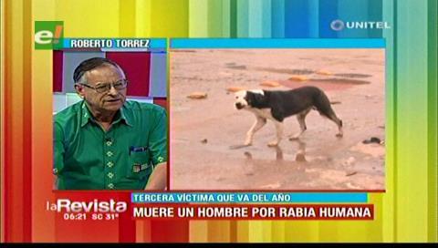 Santa Cruz: Sedes realizará eutanasia a canes callejeros pese a las protestas