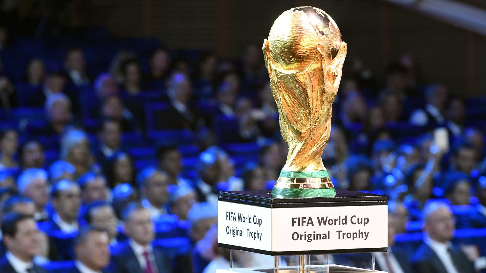 El sueño de todos: la copa que todo quieren levantar en Moscú(AFP PHOTO / Alexander NEMENOV)
