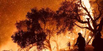 Fuegos arrasan 81.000 hectáreas, una superficie mayor que Nueva York