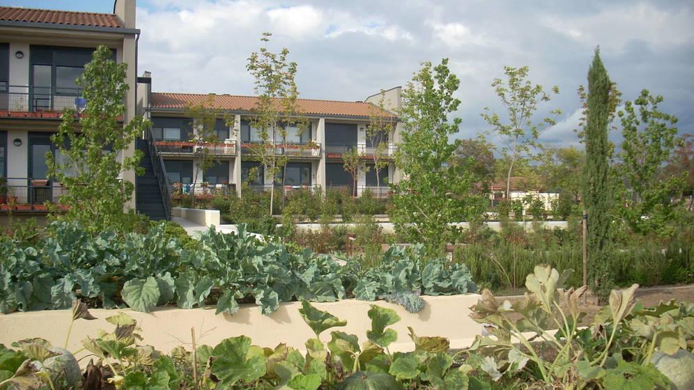 Foto: Vista parcial del huerto y las viviendas de la Cooperativa Trabensol