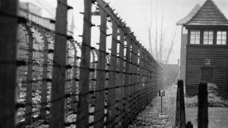 Auschwitz (Getty Images)