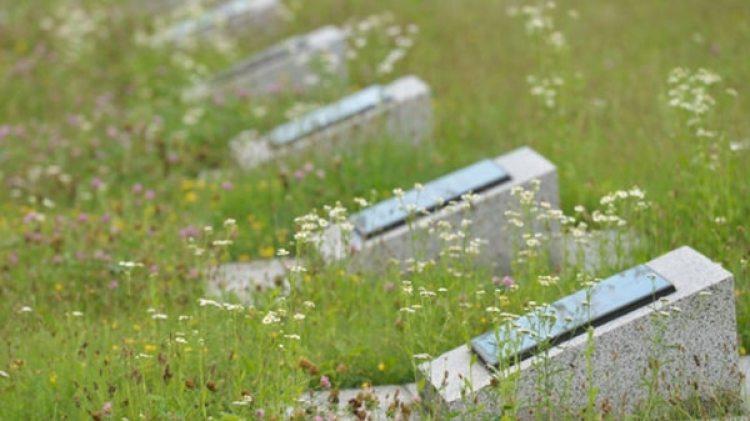No se trata de una fosa común, sino de tumbas individuales que todavía no han sido cuantificadas