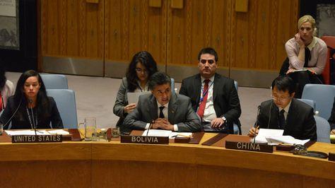 Embajador Sacha Llorenti en la ONU. Foto:Misión de Boliviana en la ONU