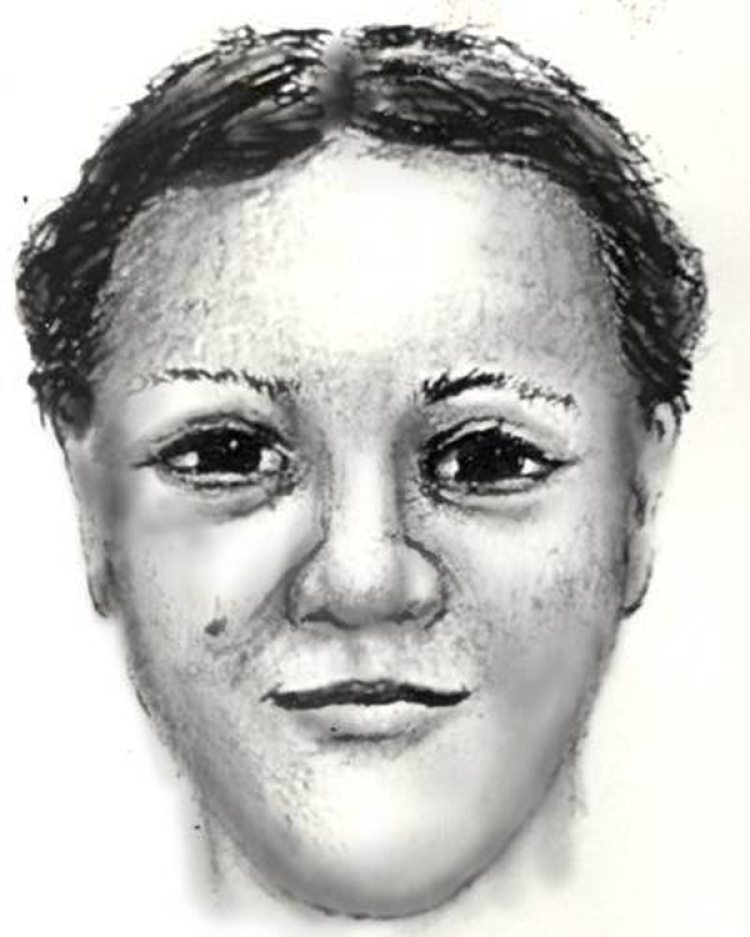 "Un dibujo de la policía de Washington que muestra a ""Latoya"", la mujer que secuestró a April Williams (National Center for Missing & Exploited Children)"