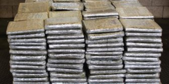 Descubren cargamento de marihuana valorado en más 600 mil dólares escondido entre vegetales