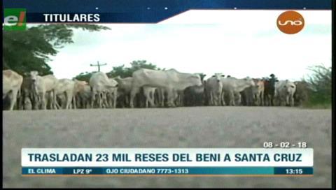 Video titulares de noticias de TV – Bolivia, mediodía del jueves 8 de febrero de 2018
