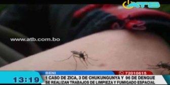 Detectan casos de dengue, chikungunya y zica en el Beni e inician campaña de prevención