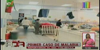 Confirman un caso de malaria en Santa Cruz