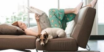 ¿Cómo lograr una casa libre de estrés?