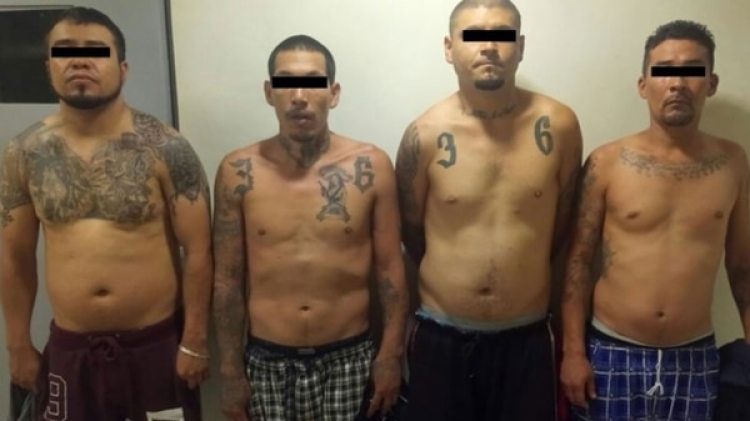 """El Cártel de Sinaloa recurrió a las pandillas como """"Los Mexicles"""" para enfrentar a sus enemigos en Ciudad Juárez."""