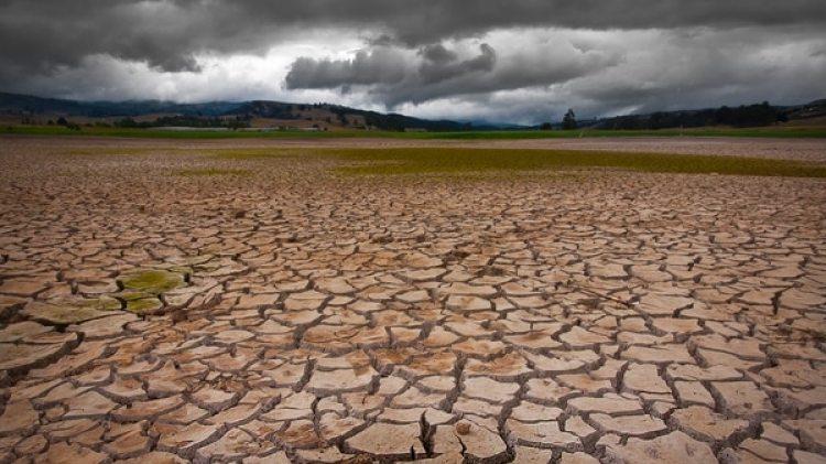 Por primera vez se hallaron pruebas empíricas del aumento de la temperatura global como causal de la extinción de los dinosaurios y otras especies. (iStock)