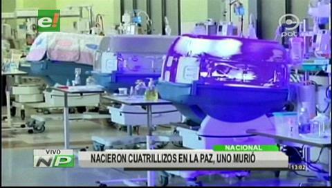 La Paz: Nacieron cuatrillizos, uno murió