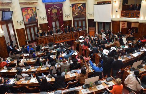 La sesión del pleno de la Asamblea Legislativa Plurinacional que aprobó el receso.