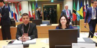 CELAC ratifica por unanimidad presidencia pro témpore de Bolivia para 2019