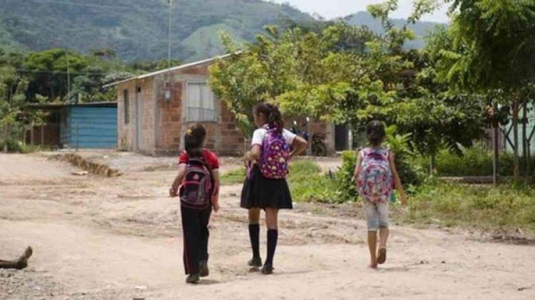 El 92% de los niños de entre seis y nueve años que viven en las zonas de presencia de campos de coca ya están trabajando en ellos, por lo que tienen un rezago escolar del 35,5%.