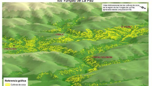 Cultivos de coca identificados en 2017 en color amarillo sobre la imagen de satélite en una zona de los Yungas de La Paz.