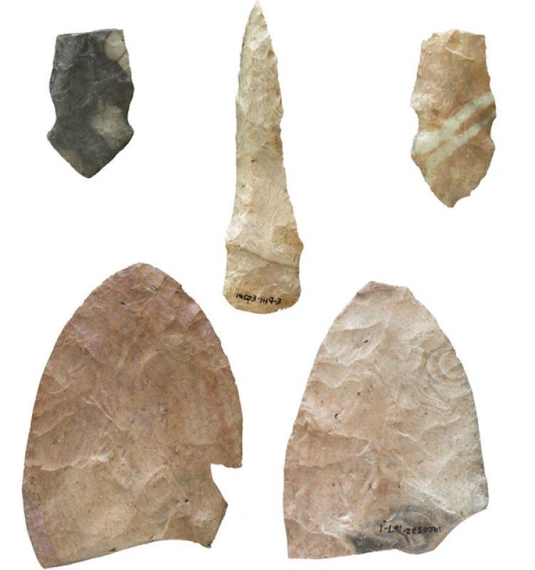 Algunos de los utensilios que identificó WSU. (Donald Blakeslee/Archaeological Conservancy)