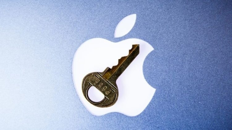 Apple eliminó una app de la Mac App Store que enviaba datos personales de usuarios a China.