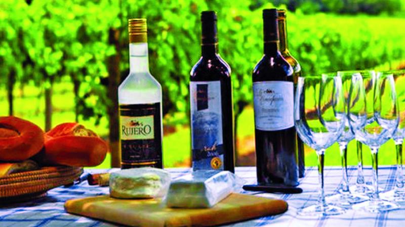 Industria de vino en emergencia por la devaluación en Argentina