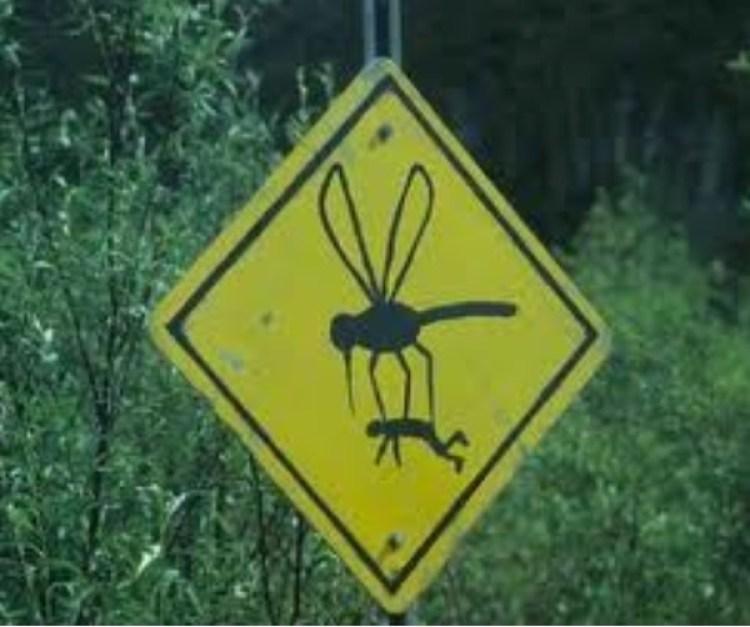 Para advertir la abundancia de los gallinipers en una zona boscosa hay quienes usan el sentido del humor con carteles como este